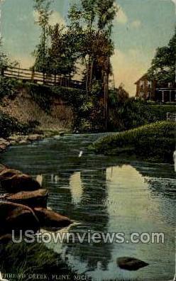 Thread Creek - Flint, Michigan MI Postcard