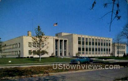 County & City Bldg - Port Huron, Michigan MI Postcard