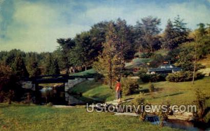 Roadside Park - MIsc, Michigan MI Postcard