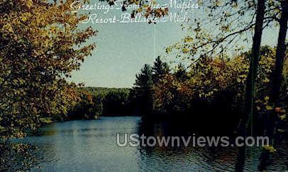The Maples - Bellaire, Michigan MI Postcard