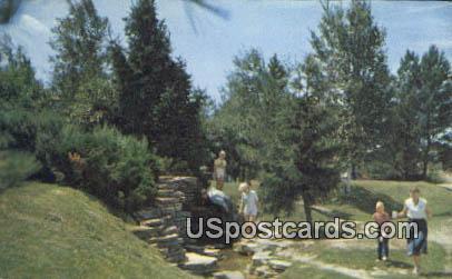 Roadside Spring - MIsc, Michigan MI Postcard