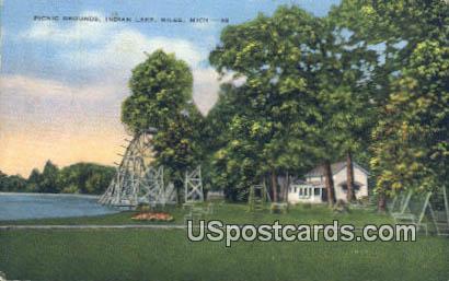 Picnic Grounds, Indian Lake - Niles, Michigan MI Postcard