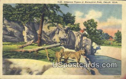 Siberian Tigers, Zoological Park - Detroit, Michigan MI Postcard