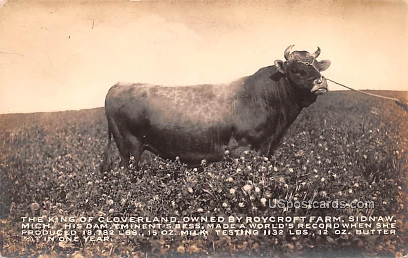 King of Cloverland Owned by Roycroft Farm - Sidnaw, Michigan MI Postcard
