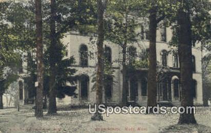 Union School - Niles, Michigan MI Postcard