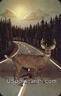 Call of the Wild Museum - Gaylord, Michigan MI Postcard