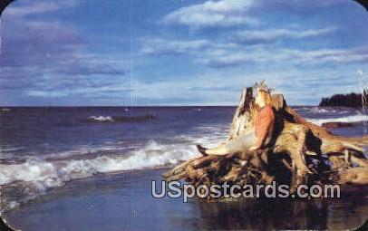 Real Treat - MIsc, Michigan MI Postcard