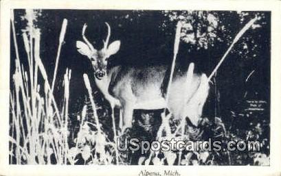 Alpena, MI Postcard      ;      Alpena, Michigan