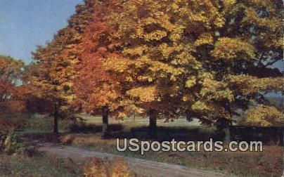 Flint, Michigan Postcard      ;      Flint, MI