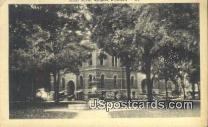 Court House - Hastings, Michigan MI Postcard