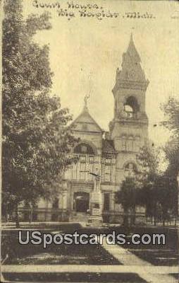 Court House - Big Rapids, Michigan MI Postcard