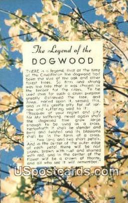 Ledgend of the Dogwood - MIsc, Michigan MI Postcard