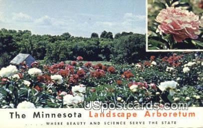Landscape Arboretum - Minnesota MN Postcard