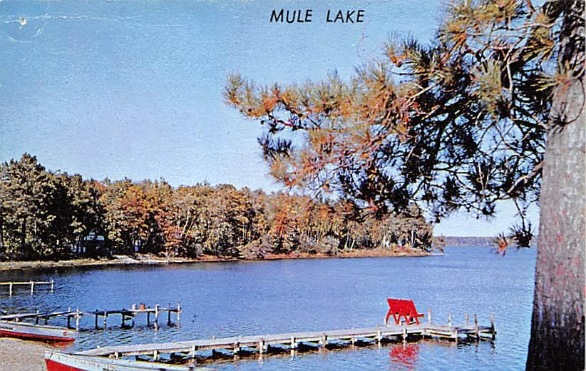 Mule Lake MN