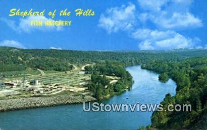 Shepherd of the Hills, Fish Hatchery - Branson, Missouri MO Postcard