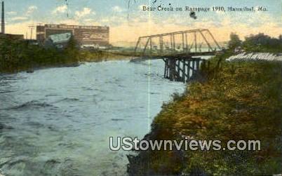 Bear Creek, Rampage 1910 - Hannibal, Missouri MO Postcard