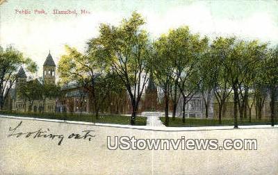 Public Park - Hannibal, Missouri MO Postcard