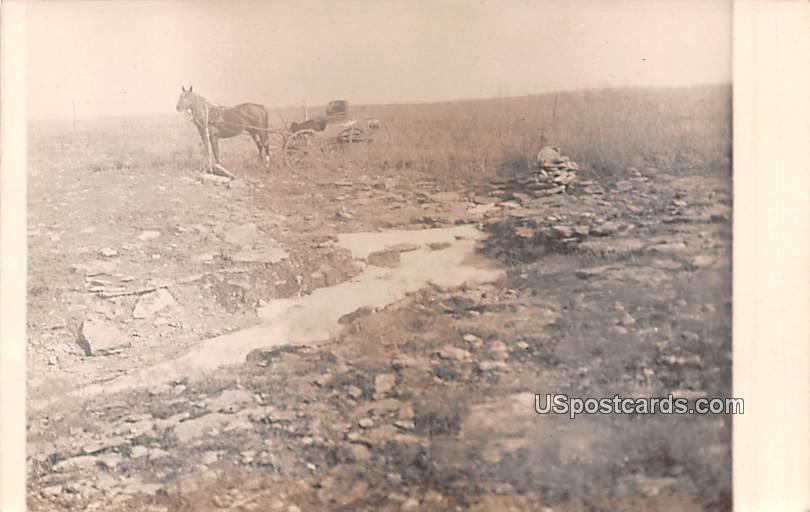 Horse and Carriage - Osage River, Missouri MO Postcard