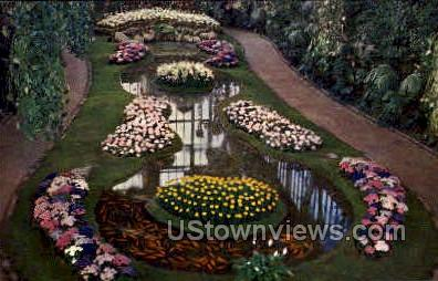 Floral Display - St. Louis, Missouri MO Postcard
