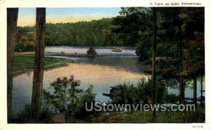 A View on Lake Taneycomo - Branson, Missouri MO Postcard