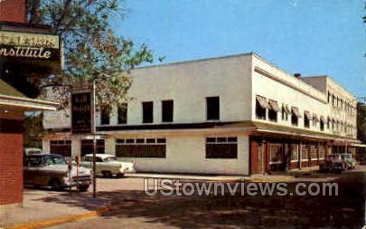 Excelsior Institute - Excelsior Springs, Missouri MO Postcard