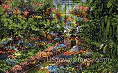 Greenhouse - St. Louis, Missouri MO Postcard