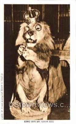 King Leo - St. Louis, Missouri MO Postcard