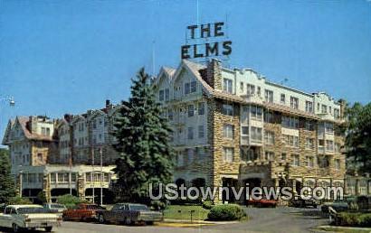 Elms Motor Hotel - Excelsior Springs, Missouri MO Postcard