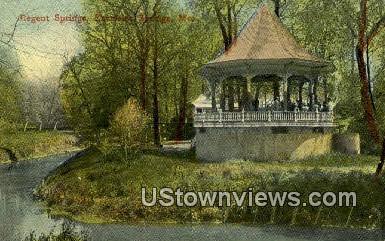 Regent Spring - Excelsior Springs, Missouri MO Postcard