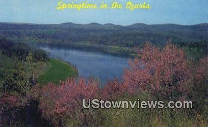Redbud in Bloom - Lake of the Ozarks, Missouri MO Postcard