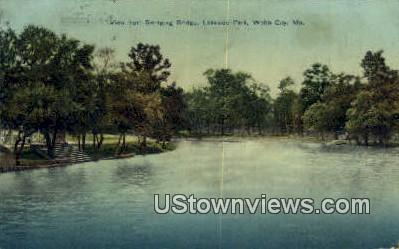 Lakeside Park - Webb City, Missouri MO Postcard