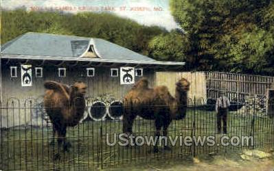 Krug's Park, Moila's Camels - St. Joseph, Missouri MO Postcard