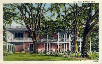 The Elms - Natchez, Mississippi MS Postcard