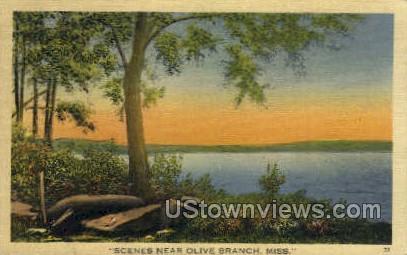 Scenes Near  - Olive Branch, Mississippi MS Postcard