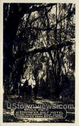 Bridle Path - Biloxi, Mississippi MS Postcard