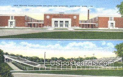 New Senior High Junior College - Meridian, Mississippi MS Postcard