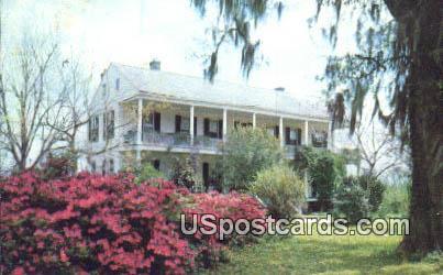 Elgin Plantation - Natchez, Mississippi MS Postcard