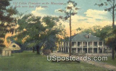 Old Cotton Plantation - Mississippi River Postcards, Mississippi MS Postcard