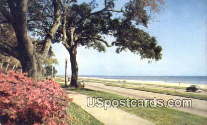 Mississippi Gulf Coast - Biloxi Postcard
