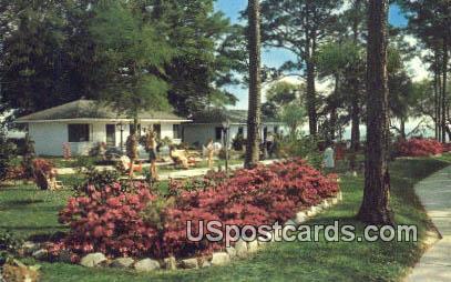 Sea Gull Motel - Biloxi, Mississippi MS Postcard