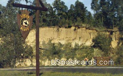 Loess Bluff - Natchez Trace Parkway, Mississippi MS Postcard