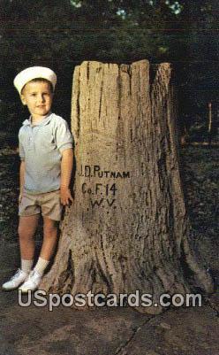 Putnam Stump, Pvt John D Putnam - Misc, Mississippi MS Postcard