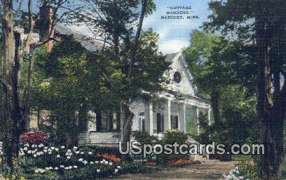 Cottage Gardens - Natchez, Mississippi MS Postcard