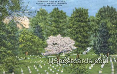 Dogwood Tree, National Military Cemetery - Vicksburg, Mississippi MS Postcard