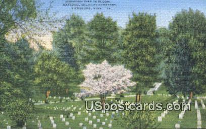 National Military Cemetery - Vicksburg, Mississippi MS Postcard