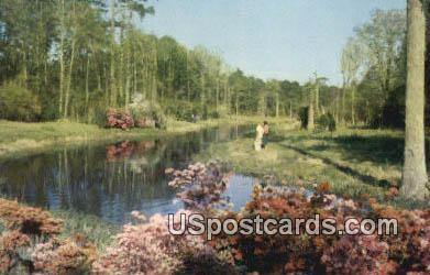 Lagoon at Beauvoir, Jefferson Davis Shrine - Biloxi, Mississippi MS Postcard