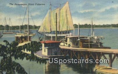 Fisheries - Biloxi, Mississippi MS Postcard