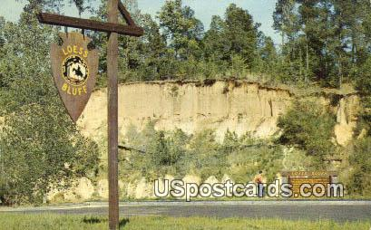 Natchez Trace Parkway - Loess Bluff, Mississippi MS Postcard