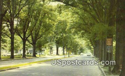 Grand Boulevard - Greenwood, Mississippi MS Postcard