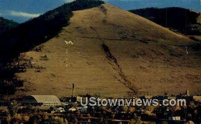 University of Montana Campus - Missoula Postcard